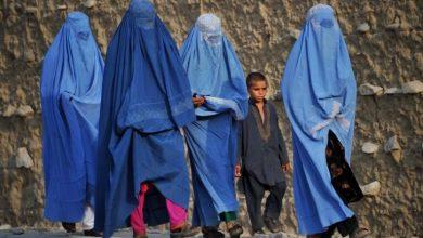تصویر پرستوهای کابل؛ تجربهی تلخ زمامداری طالبان در افغانستان